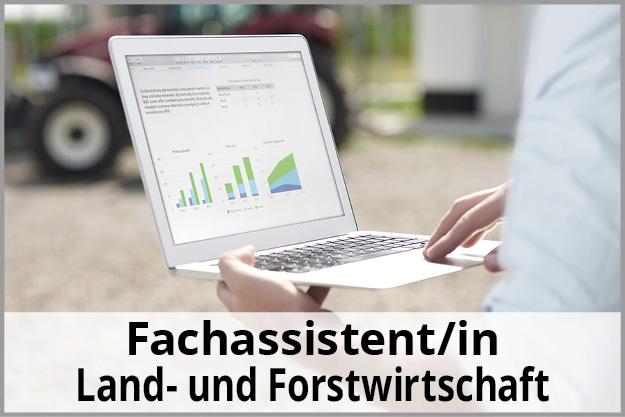 Button Fachassistent/in Land und Forstwirtschaft